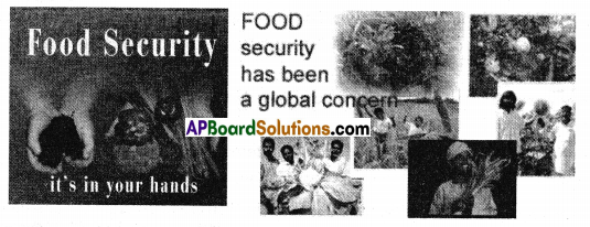 AP SSC 10th Class Social Studies Solutions Chapter 11 Food Security 2