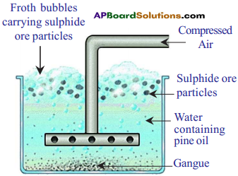 AP SSC 10th Class Chemistry Important Questions Chapter 13 Principles of Metallurgy