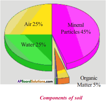 AP Board 9th Class Biology Important Questions Chapter 10 Soil Pollution 1