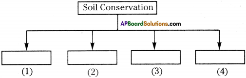 AP Board 9th Class Biology Important Questions Chapter 10 Soil Pollution 2