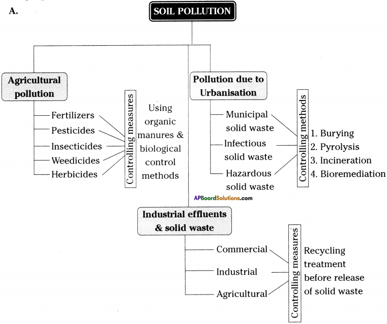 AP Board 9th Class Biology Solutions Chapter 10 Soil Pollution 2