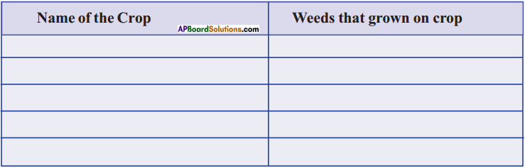 AP Board 9th Class Biology Solutions Chapter 8 Challenges in Improving Agricultural Products 5