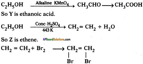 AP SSC 10th Class Chemistry Important Questions Chapter 14 Carbon and its Compounds 38