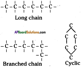 AP SSC 10th Class Chemistry Important Questions Chapter 14 Carbon and its Compounds 57