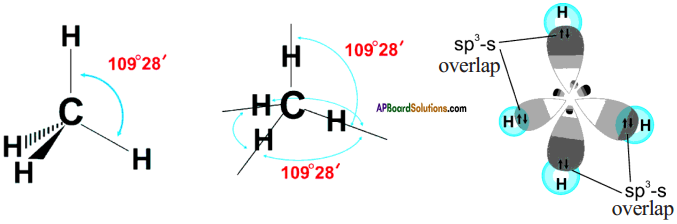 AP SSC 10th Class Chemistry Important Questions Chapter 14 Carbon and its Compounds 64