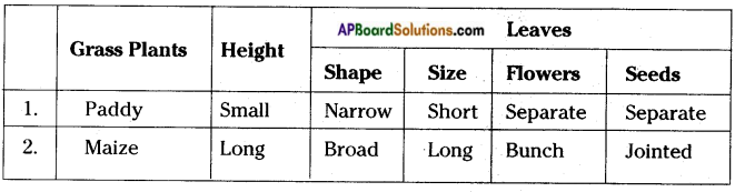 AP Board 8th Class Biology Solutions Chapter 6 Biodiversity and its Conservation 9