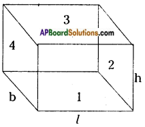 AP Board 8th Class Maths Solutions Chapter 14 Surface Areas and Volume (Cube-Cuboid) InText Questions 10