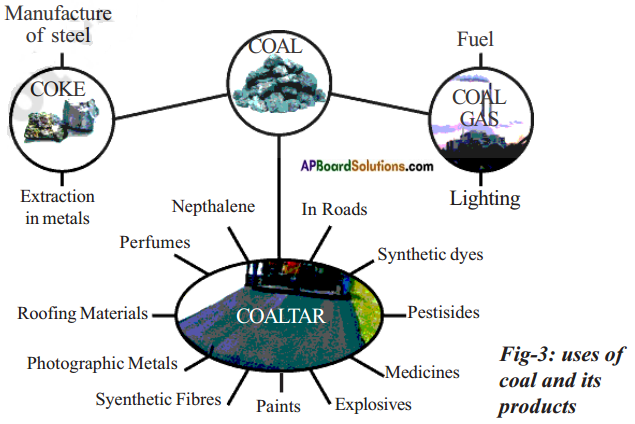 AP Board 8th Class Physical Science Solutions Chapter 7 Coal and Petroleum 8