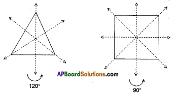 AP Board 7th Class Maths Notes Chapter 15 Symmetry 3