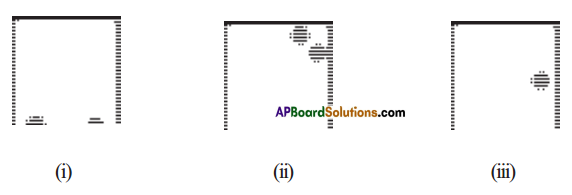 AP Board 7th Class Maths Solutions Chapter 15 Symmetry Ex 2 1