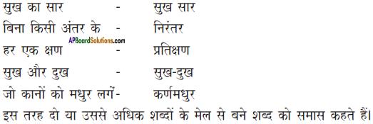 AP Board 9th Class Hindi Solutions Chapter 7 मेरा जीवन 2