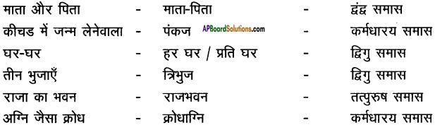 AP Board 9th Class Hindi Solutions Chapter 7 मेरा जीवन 5