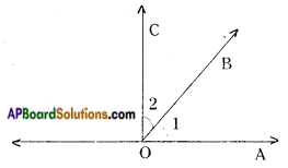 AP Board 9th Class Maths Notes Chapter 4 Lines and Angles 11