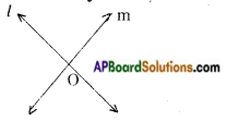 AP Board 9th Class Maths Notes Chapter 4 Lines and Angles 9