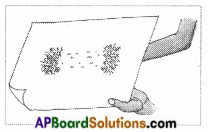 AP Board 6th Class Science Solutions Chapter 6 Fun with Magnets 10