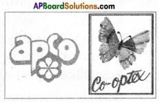 AP Board 6th Class Science Solutions Chapter 8 How Fabrics are Made 2