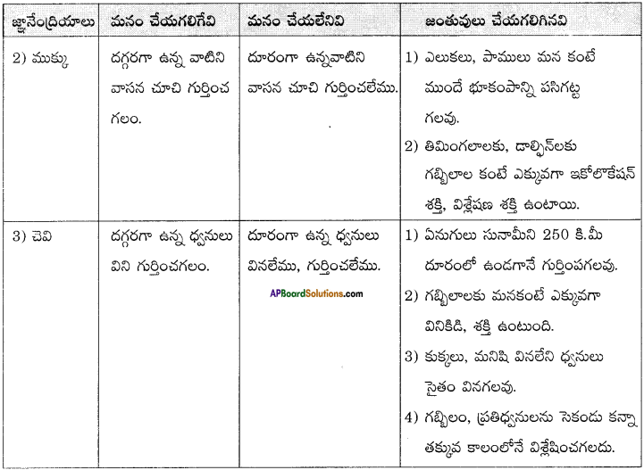 AP Board 8th Class Telugu Solutions Chapter 6 ప్రకృతి ఒడిలో 3