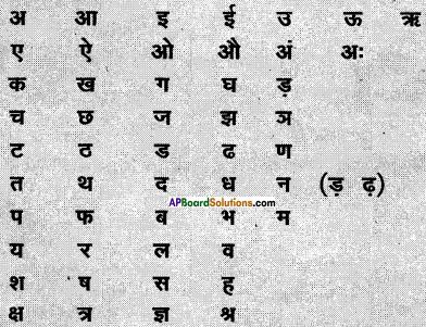 AP Board 6th Class Hindi Solutions सन्नद्धता कार्यक्रम Chapter 4 रसोई घर 2