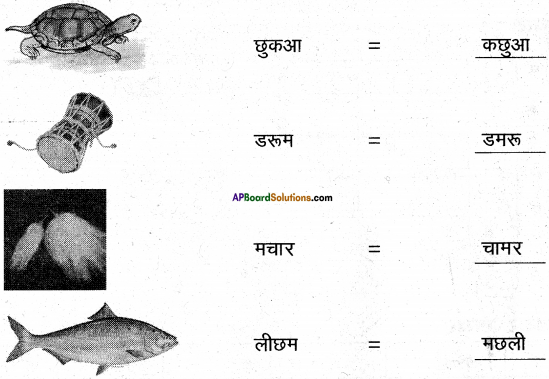 AP Board 6th Class Hindi Solutions Chapter 3 ऊँट चला 15