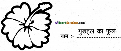 AP Board 6th Class Hindi Solutions Chapter 3 ऊँट चला 17