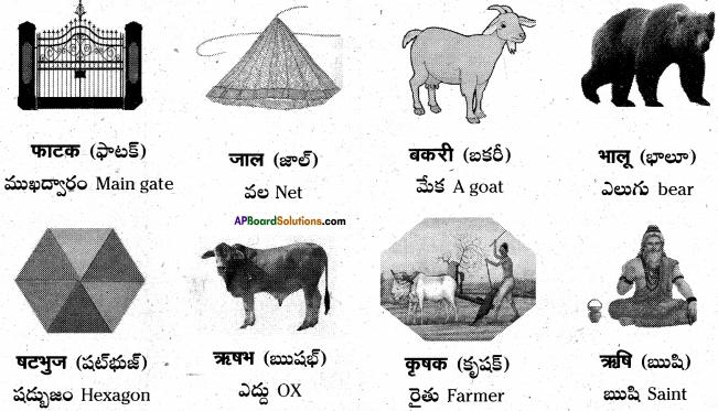 AP Board 6th Class Hindi Solutions Chapter 4 मेरा देश महान है 1
