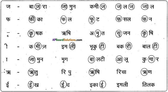 AP Board 6th Class Hindi Solutions Chapter 4 मेरा देश महान है 24
