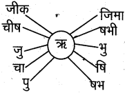 AP Board 6th Class Hindi Solutions Chapter 4 मेरा देश महान है 36