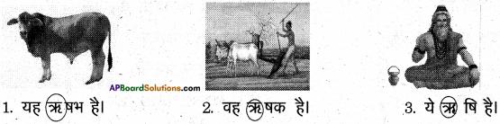 AP Board 6th Class Hindi Solutions Chapter 4 मेरा देश महान है 7