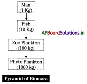 AP Board 10th Class Biology Notes Chapter 9 Our Environment 3