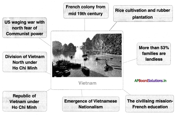 AP Board 10th Class Social Studies Notes Chapter 15 National Liberation Movements in the Colonies 2