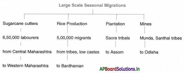 AP Board 10th Class Social Studies Notes Chapter 8 People and Migration 1