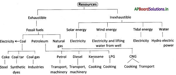 AP Board 8th Class Physical Science Notes Chapter 7 Coal and Petroleum 1