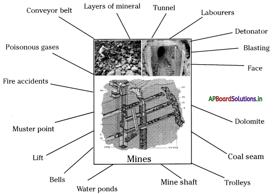 AP Board 8th Class Social Studies Notes Chapter 6 Minerals and Mining 1