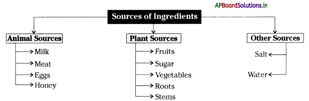 AP Board 6th Class Science Notes Chapter 1 The Food we Need 1