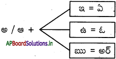 AP Board 6th Class Telugu Solutions Chapter 11 డూడూ బసవన్న 2